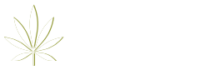SOE-Logo-264x100 (2)